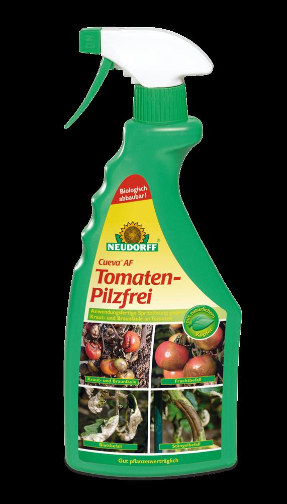 Tomaten-Pilzfrei