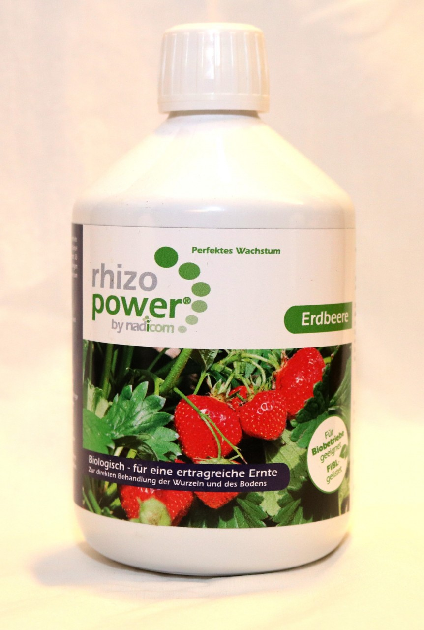 rhizo power® Erdbeere