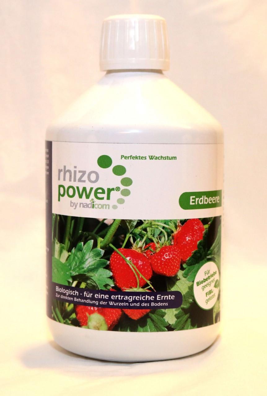 rhizo power® Erdbeere