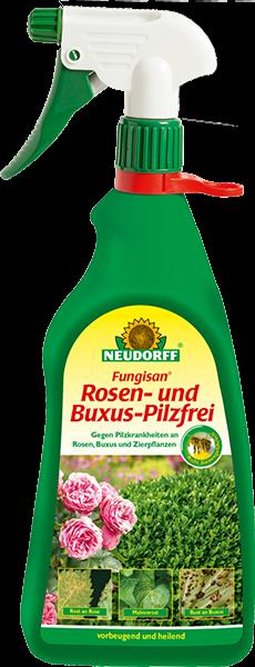Rosen- und Buxus-Pilzfrei